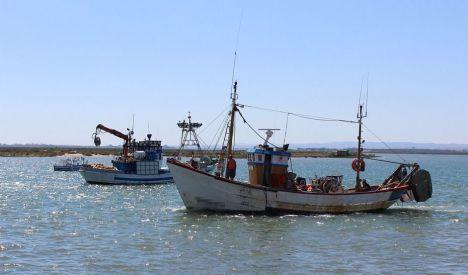 Exenciones en el pago de tasas portuarias y pesqueras