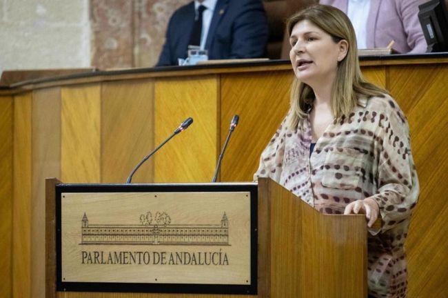 Espinosa cuestiona que el PSOE critique los 3.000 empleos en vigilantes de #COVID19