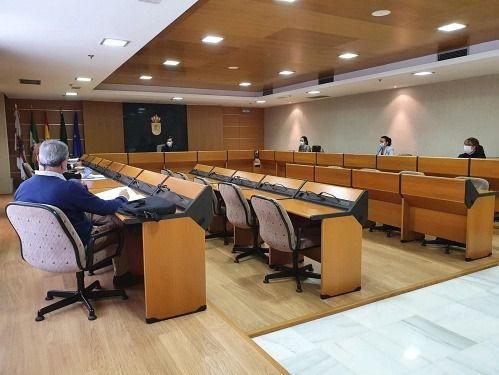 Unanimidad en El Ejido para instar al Gobierno a adoptar medidas frente el COVID-19