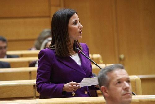 Plaza (PSOE) califica de 'disparatada' la propuesta de Cs sobre Educación en el Senado