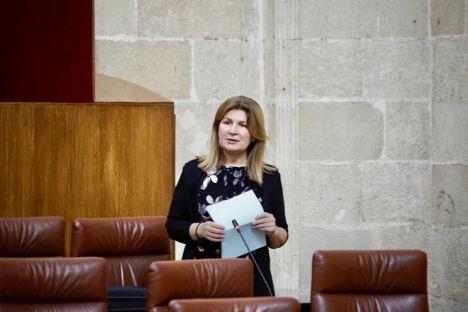 Espinosa pide a Pedro Sánchez que pelee por los fondos europeos para transición energética que beneficiaría a Carboneras