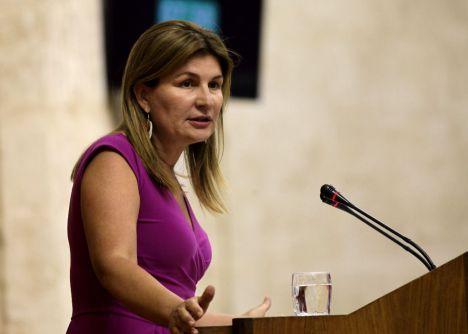 """Espinosa denuncia """"falta de transparencia"""" en la Sociedad Almería Alta Velocidad"""