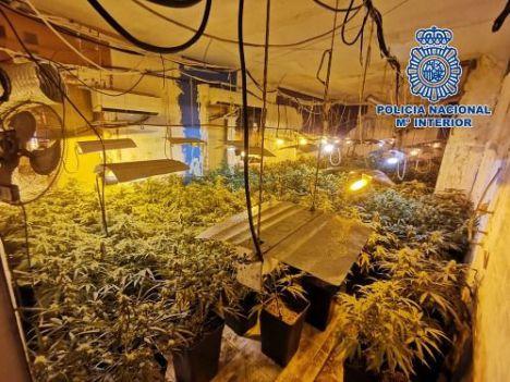 La Guardia Civil localiza una plantación indoor de marihuana