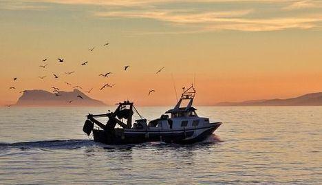 El Ayuntamiento de Carboneras eleva a la Junta la propuesta del sector pesquero para su Puerto
