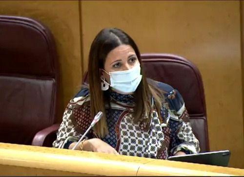 El PSOE propone en el Senado mejorar la vida de los pueblos