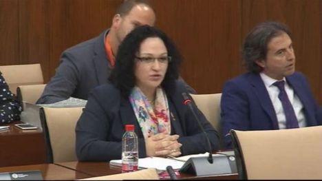 Luz Belinda Rodríguez defiende su derecho a poner la bandera de Falange en el Parlamento