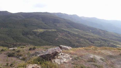 La UAL suma a un estudio internacional pionero sobre las consecuencias de las actuaciones forestales