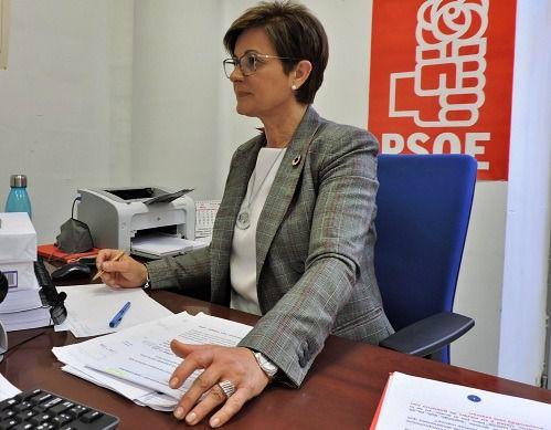 Satisfacción en el PSOE por el apoyo a un Plan de Actuación para impulsar el Sector 20