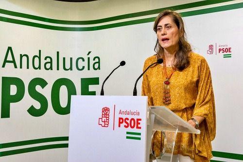 El PSOE insta al presidente de la Diputación a aplazar los procesos selectivos