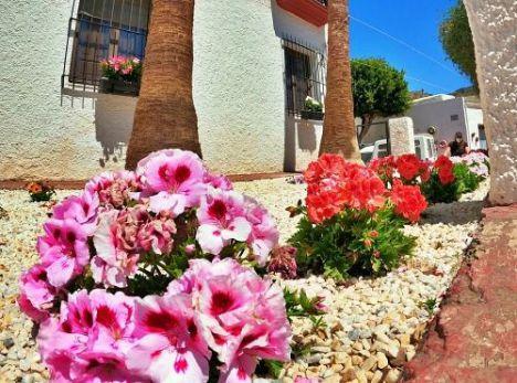 El Concurso Fotográfico 'Paseando Entre Flores' Amplia Su Plazo De Recepción