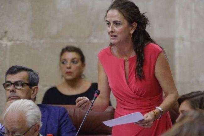 """La Junta ve """"insuficiente"""" la rebaja fiscal del Gobierno al sector agrario"""