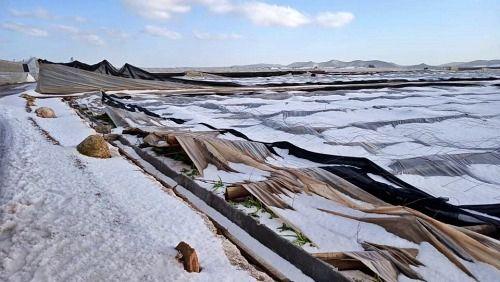 El Ayuntamiento de El Ejido dice que los productores afectados por el tornado de 2018 tendrán ayuda de la Junta