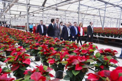 """El alcalde destaca el """"espíritu innovador"""" de las empresas agrícolas almerienses como el 'Semillero Laimund'"""