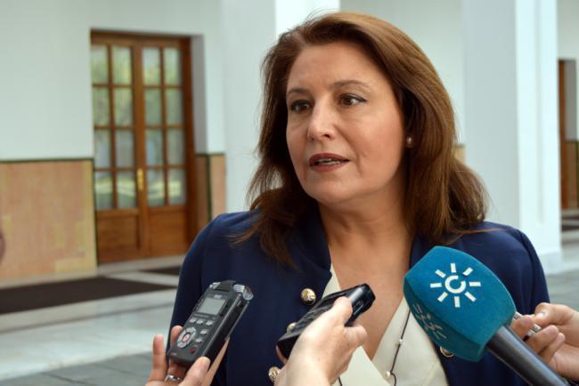 La Junta debe al Ayuntamiento de la capital y a Diputación 5 millones en Dependencia