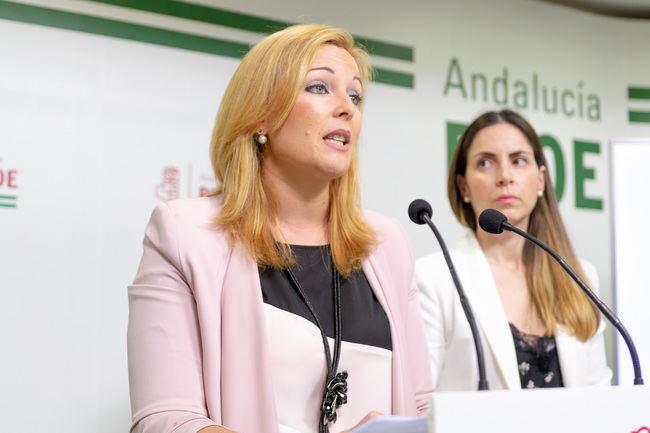 """El PSOE acusa al PP de """"paralizar"""" Adra"""