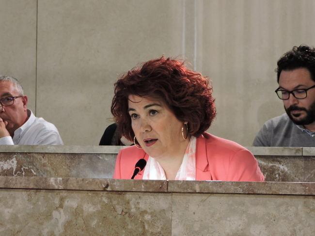 El PSOE traslada su compromiso en la lucha contra el plástico y el césped artificial