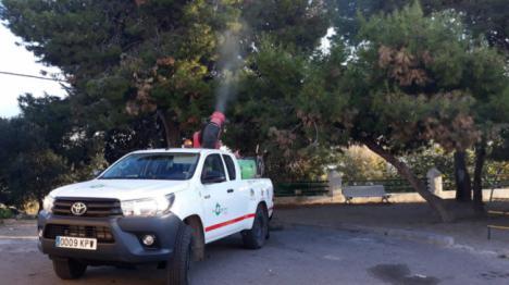 Trabajos de prevención de la procesionaria en centros escolares y zonas verdes de Adra