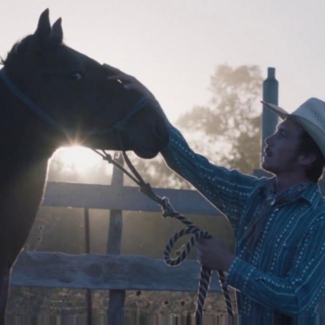 Cineclub Almería regresa al Teatro Apolo este jueves, con la película 'The Rider'