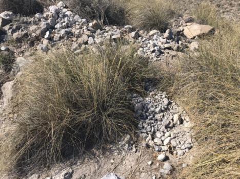 El PSOE exige explicaciones por la destrucción del acceso a la playa de los Muertos