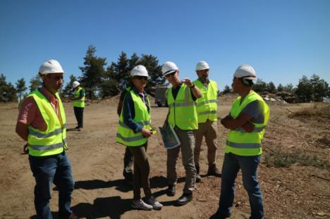 Trabajos selvícolas y aprovechamientos forestales en la Sierra de los Filabres