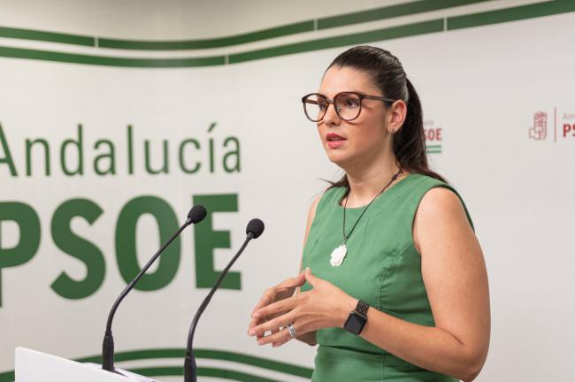 El PSOE de Almería presenta 26 enmiendas a los Presupuestos andaluces