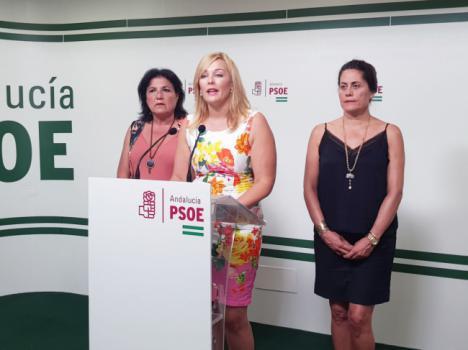 El PSOE exige al PP un plan de choque contra la lista de espera en Dependencia