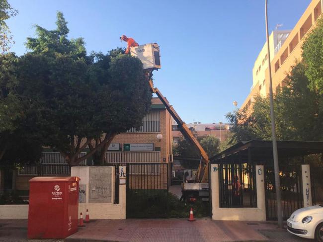 DUE acomete obras de mantenimiento de los centros escolares de El Ejido