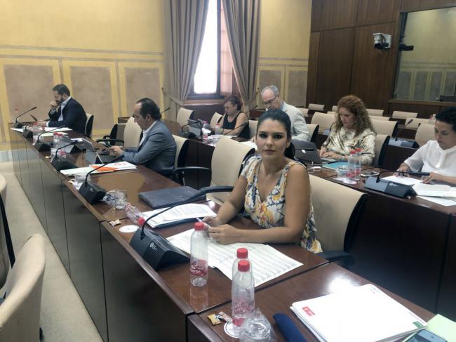 El PSOE muestra su preocupación ante el descenso de las visitas a los museos