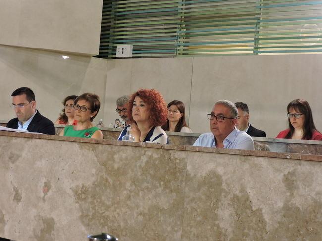 Vox no cree que 271 agresiones a LGTBi justifiquen un 'observatorio'