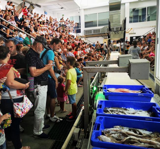 Éxito de público en la II Jornada de Puertas Abiertas de la lonja pesquera