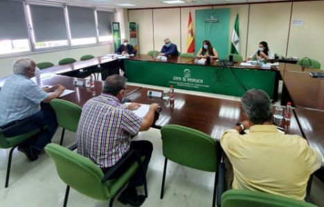 La Junta trabaja con los productores de flor cortada para ayudarles en la crisis