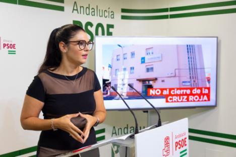 El PSOE recuerda que el Hospital de Cruz Roja aparece en el plan contra el #COVID19