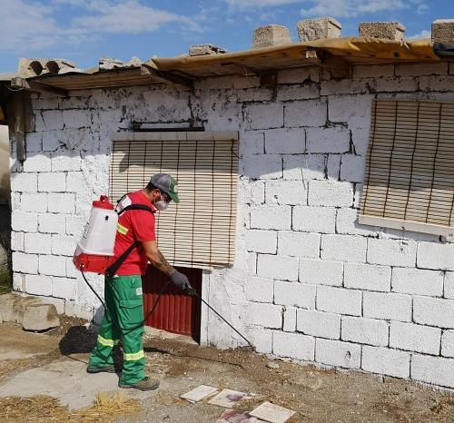 Desinfección diaria de los asentamientos de inmigrantes en El Ejido