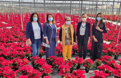 La Junta anima a complar flor de pascua almeriense