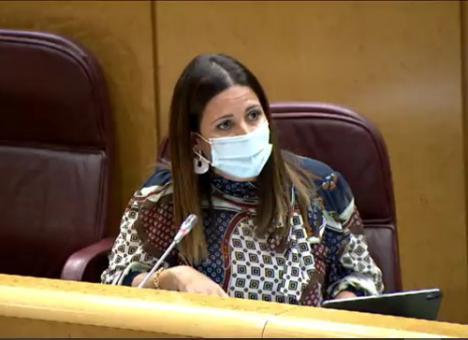 El PSOE resalta que el Gobierno central aumenta la inversión en Educación un 139%