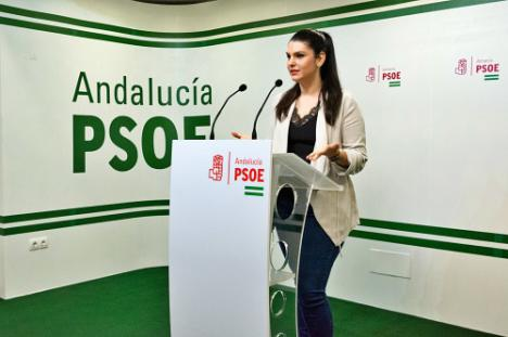 El PSOE de Almería defiende las conquistas sociales del 28F