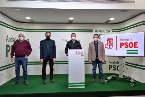 El PSOE urge a un convenio entre Diputación, Junta y Endesa por el servicio eléctrico en Nacimiento y Andarax