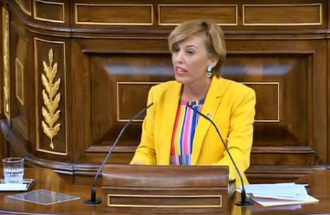 Ferrer Tesoro defiende en el Congreso que no se prohíban los homenajes a etarras