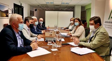 Andalucía es la única comunidad de España que pierde con la nueva PAC