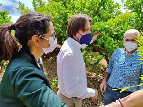 """Burgos (Cs): """"Reivindicamos la aportación íntegra de agua del trasvase Tajo-Segura para el levante almeriense"""""""
