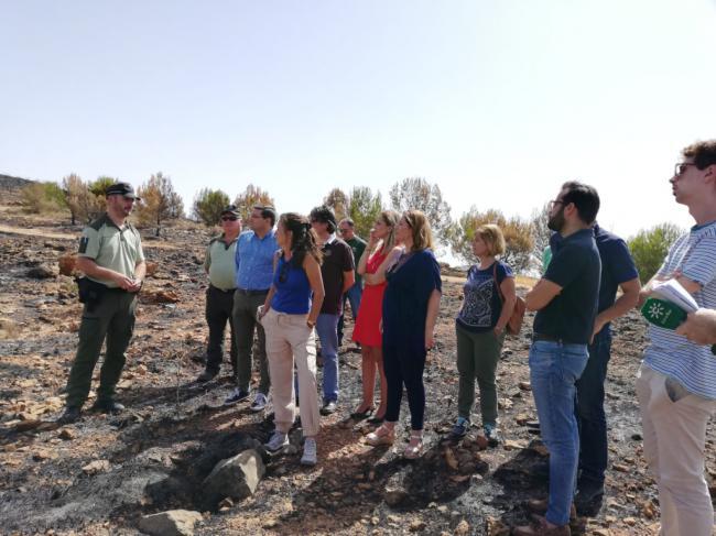 La Junta acometerá la restauración de Terque tras el incendio