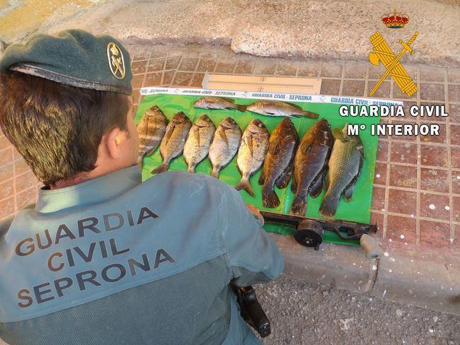 Denunciado por la Guardia Civil de Almería por pesca ilegal en Cabo de Gata