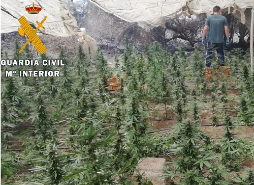 El incendio de Almerimar deja al descubierto un invernadero de marihuana