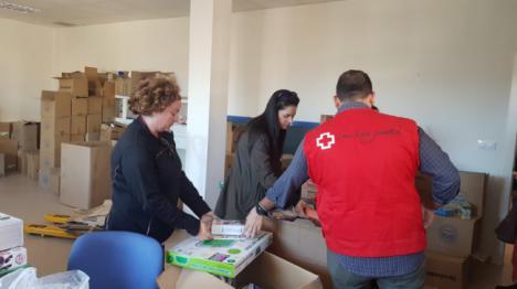 Cruz Roja Juventud repartió 800 juguetes en Navidad