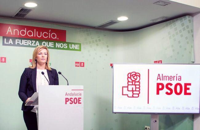 El PSOE pone en valor la actuación de la Junta en el Colegio Nueva Andalucía