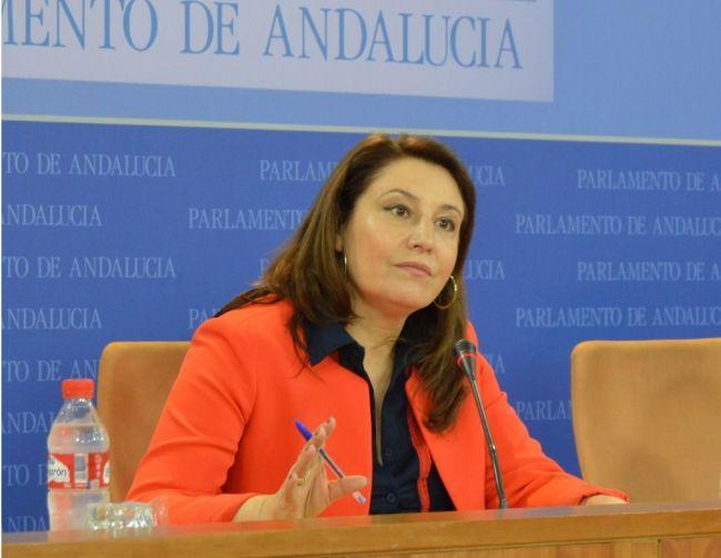 El PP pide que el Gobierno andaluz informe sobre CEMEX