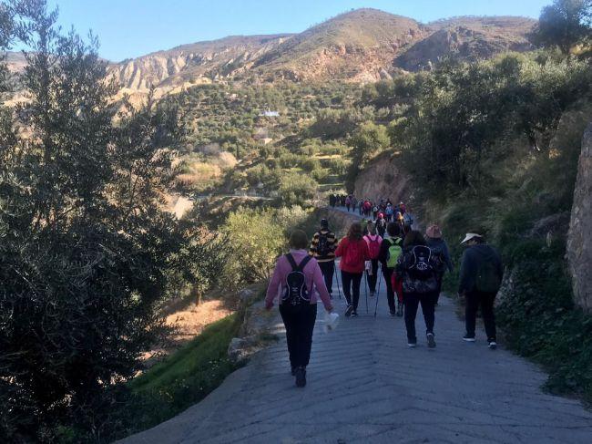 El PMD dedica un espacio de senderismo a los mayores para visitar la localidad de Abla