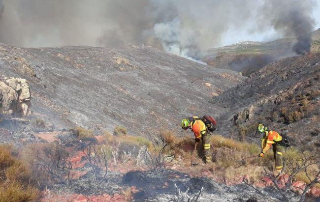 Declarado un incendio forestal en el paraje La Zarda de Terque