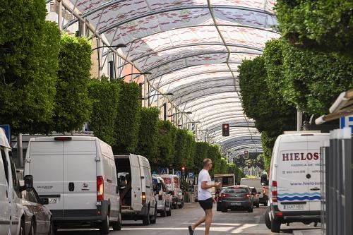 La reordenación del tráfico en el Paseo de Almería lo reducen más de un 37%