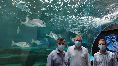 Aquarium Costa de Almería recibe el sello 'Andalucía Segura'
